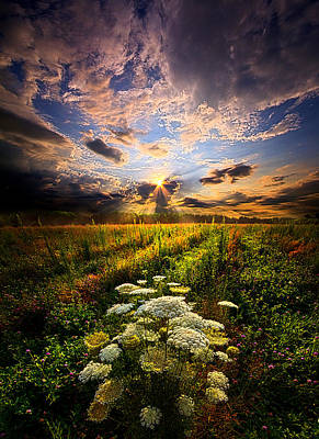 Rise And Shine Print by Phil Koch