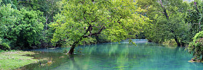 Ozarks Photograph - River Flowing Through A Forest, Ozark by Panoramic Images