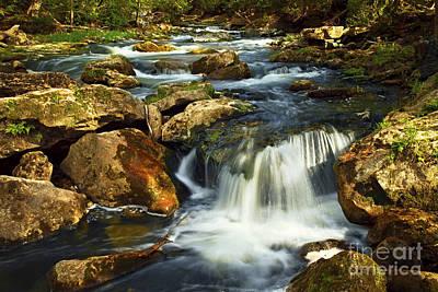 Environment Photograph - River Rapids by Elena Elisseeva