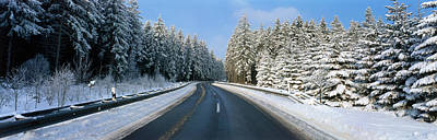 Road, Hochwald, Germany Print by Panoramic Images