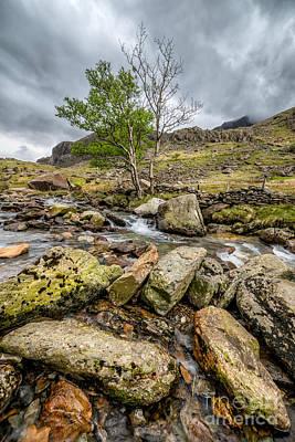Llanberis Photograph - Rocky Stream by Adrian Evans