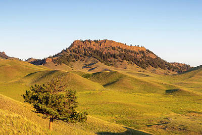 Rolling Hills Of The Bears Paw Print by Chuck Haney