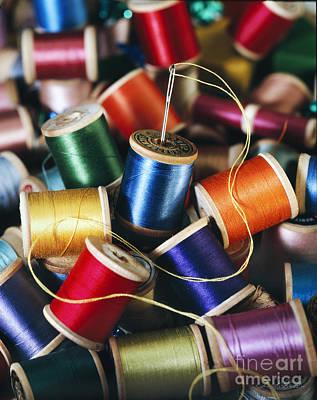 Owner Photograph - Rolls Or Yarn by Iris Richardson
