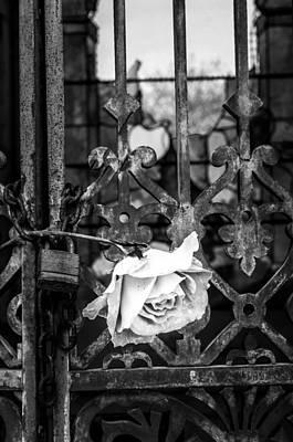 Crosses Photograph - Rose In Remembrance 2 by Andy Crawford