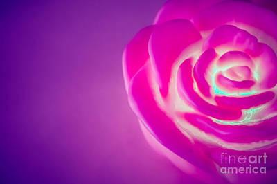 Rose Original by Nuriyah