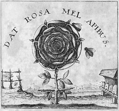 Rosicrucian Mystical Symbol Print by Middle Temple Library