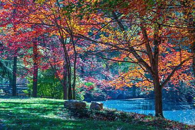 Round Hill Park Original by Tammy  McGogney