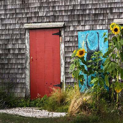Sunflowers Photograph - Rustic Cape Cod by Bill Wakeley