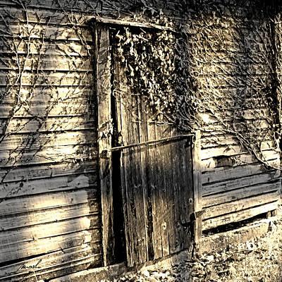 Grape Vines Digital Art - Rustic Door by The Art of Marsha Charlebois