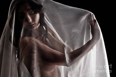 Provocative Photograph - Sheer Nude by Jt PhotoDesign