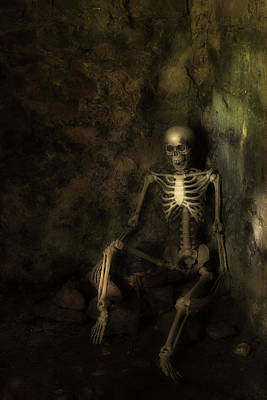 Human Skeleton Photograph - Skeleton by Amanda Elwell