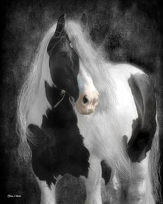 Black And White Horses Digital Art - Slainte by Fran J Scott