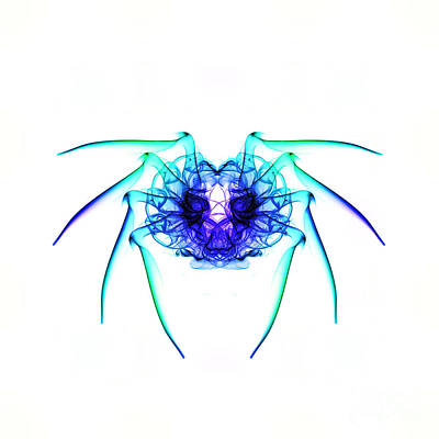 Smoke Spider 2 Print by Steve Purnell