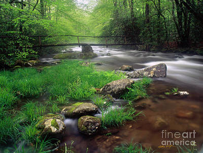 Smoky Mountain Stream 2009 Print by Matthew Turlington