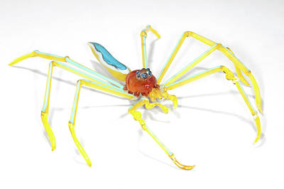 Glass Blowing Photograph - Spider by Tomasz Litwin