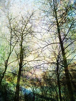 Design With Photograph - Spring Awakening by Shirley Sirois