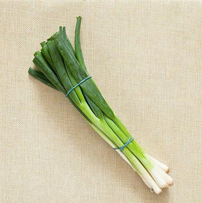 Spring Onions Print by Tom Gowanlock