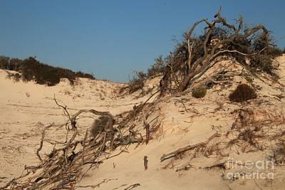 St Joseph Sand Dunes Print by Adam Jewell