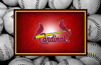 Cardinal Photograph - St Louis Cardinals by Joe Hamilton