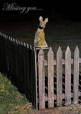 Photograph - Still Waiting by Russ Brown
