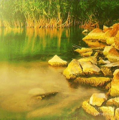 Water Filter Painting - Stones In Front Of The Reed by Odon Czintos