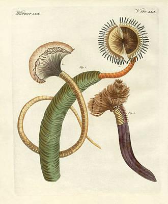 Worm Drawing - Strange Worms by Splendid Art Prints