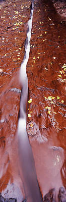 Zion National Park Photograph - Stream Flowing Through Rocks, North by Panoramic Images