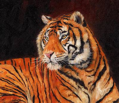 India Wildlife Painting - Sumatran Tiger by David Stribbling