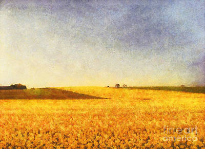 Impressionist Photograph - Summer Field by Pixel Chimp