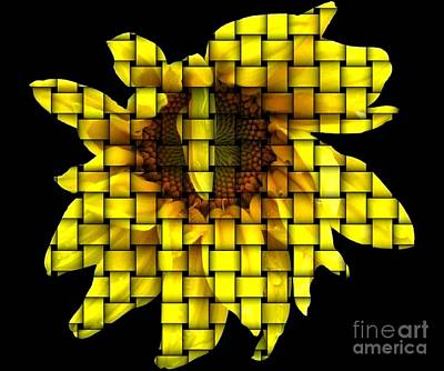 Bud Photograph - Sunflower With Woven Effect by Rose Santuci-Sofranko