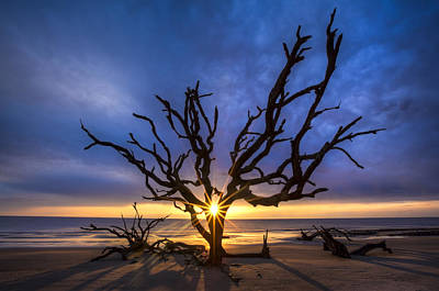 Jekyll Photograph - Sunrise Jewel by Debra and Dave Vanderlaan