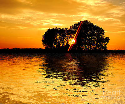 Vine Photograph - Sunset And Trees by Michal Bednarek