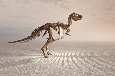 T. Rex Dinosaur Skeleton Print by Carol and Mike Werner