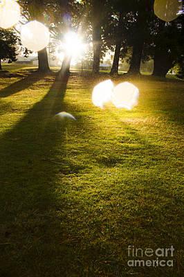 Evening Scenes Photograph - Tasmanian Countryside Landscape. Sun Shower by Jorgo Photography - Wall Art Gallery