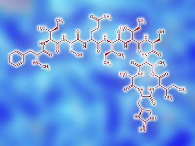 Molecular Structure Photograph - Teixobactin Antibiotic Structure Formulae by Alfred Pasieka