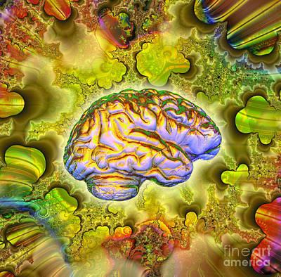 The Brain Print by Dennis D. Potokar
