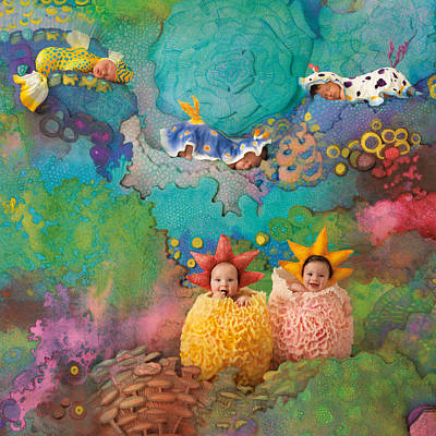 The Great Barrier Reef Print by Anne Geddes