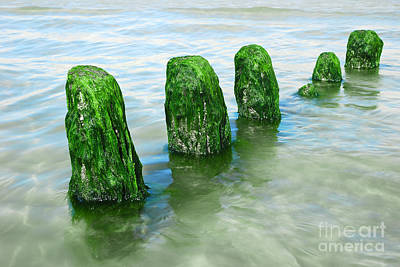Beatles Photograph - The Green Jetty by Hannes Cmarits