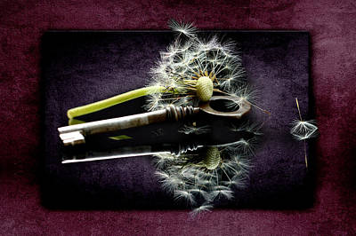 Dandelion Mixed Media - The Key by Heike Hultsch