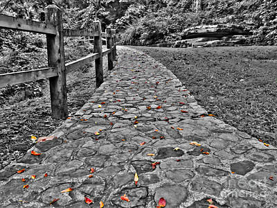 The Stone Path Print by Bob Mintie