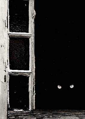 Abandoned Photograph - The Watcher by Lisa Walsh