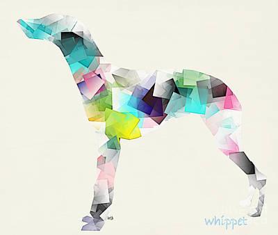 The Whippet  Print by Bri B