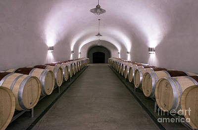 Napa Photograph - The Wine Cave by Jon Neidert