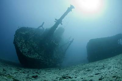 The Wreck Of Skipjack In The Maldives Print by Scubazoo