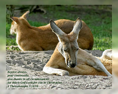1 Thessalonians 5 16-18 Print by Dawn Currie
