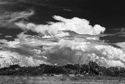 Overcast Photograph - This Is What I See by Marvin Spates