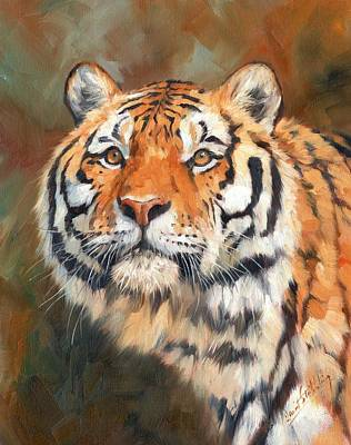 India Wildlife Painting - Tiger by David Stribbling