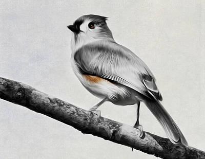 Titmouse Digital Art - Titmouse by Bill Wakeley