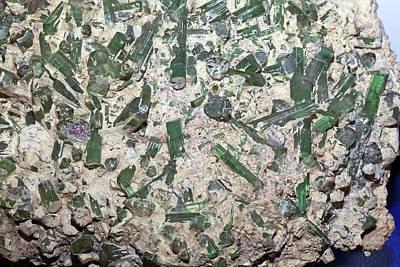 Semi-precious Photograph - Tourmaline Crystals In Quartz by Dirk Wiersma