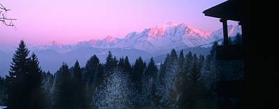 Cold Temperature Photograph - Trees With Snow Covered Mountains by Panoramic Images